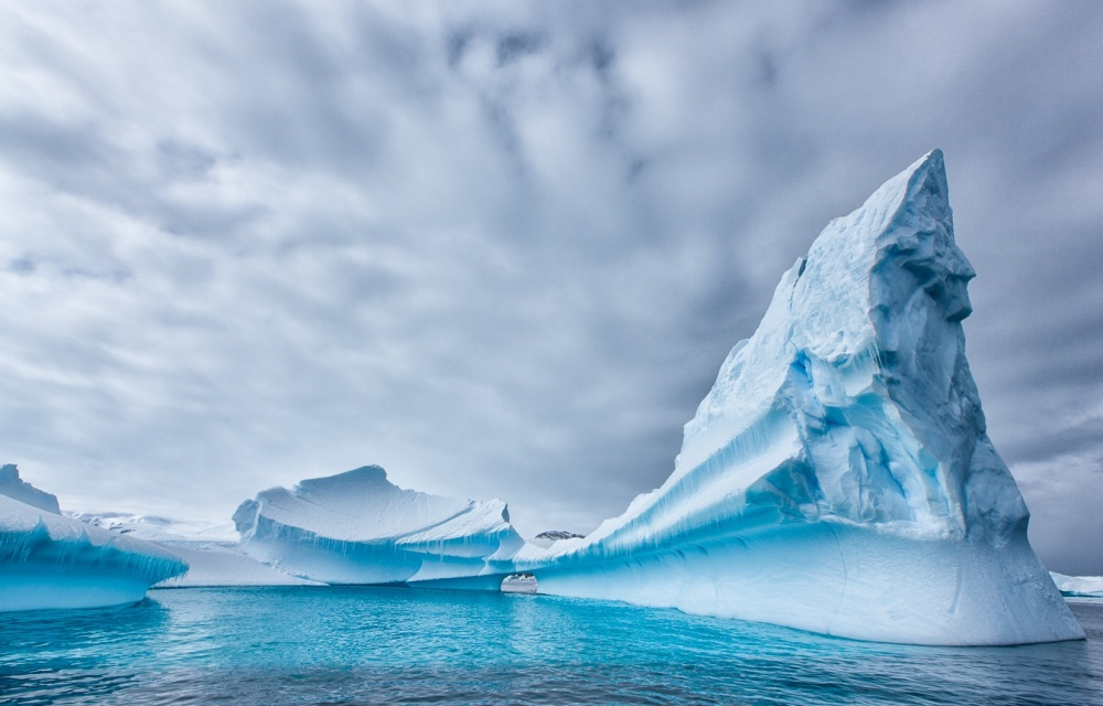 2915410-Antarctica-1000-1464523250