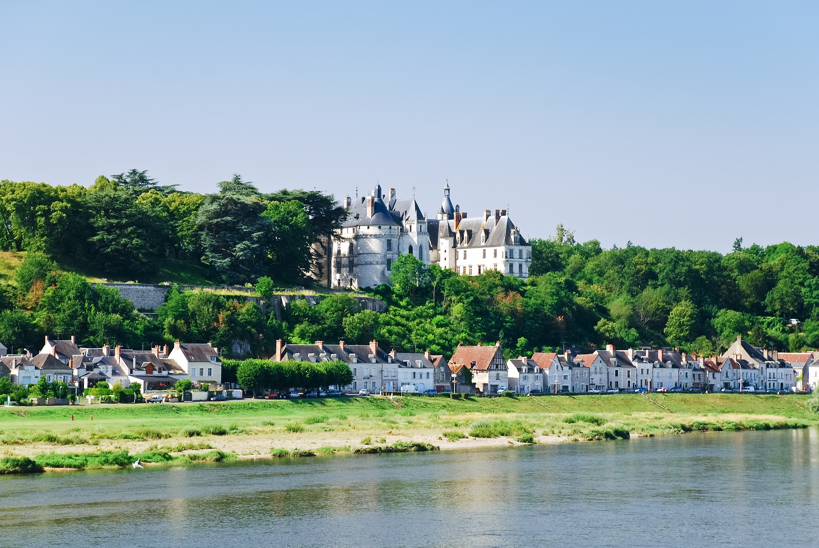 view on castle and town Amboise on the bank of river Loire, France